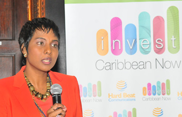 Felicia J. Persaud, founder, Invest Caribbean Now making the announcement at the June 4, 2014 summit. (Sharon Bennett Image)