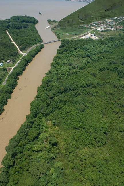 Looking down River in Bolton Bank, Belize.